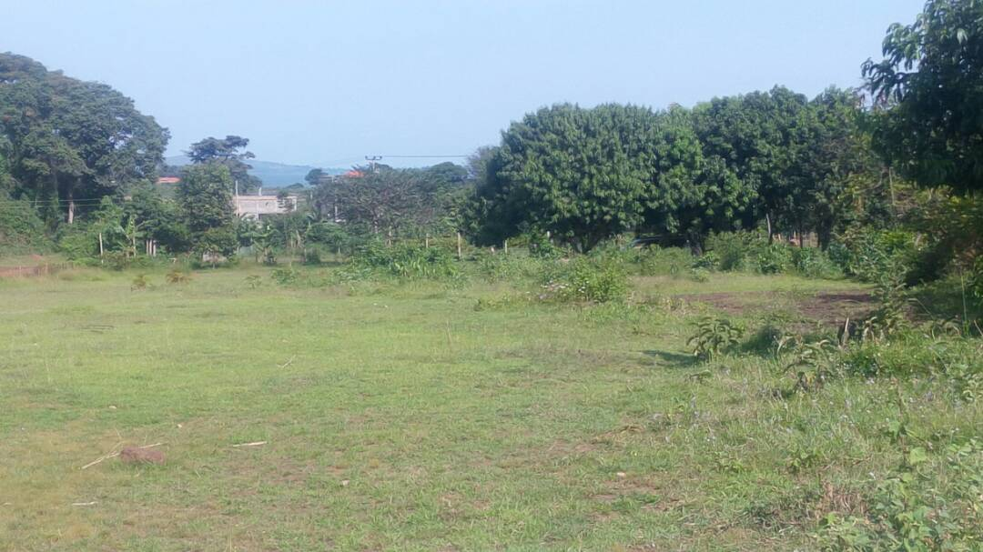 Latest Land for Sale